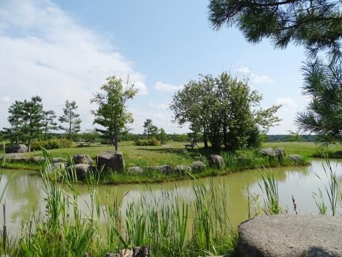 Japāņu-dārzs-Lietuvā-3
