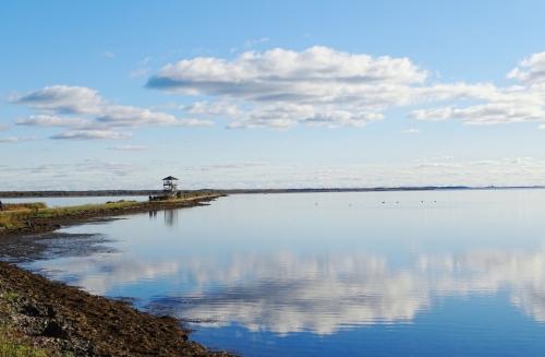 Liepajas-ezers-putnu-tornis