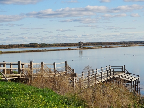 Liepajas-ezers-tilts
