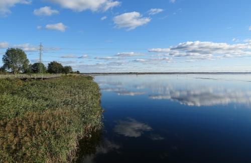 Liepajas-ezers-zirgu-sala